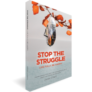 Stop The Struggle Book